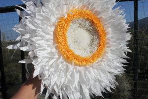 Paper flowers: giant strawflower