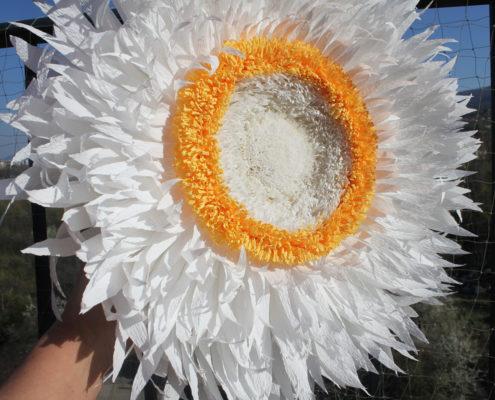 Fleurs en papier : immortelle géante