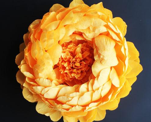 Fleurs en papier : pivoine jaune géante