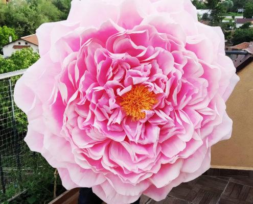 Fleurs en papier : rose de Damas géante