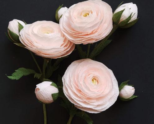 Renoncules sublimes pour compositions florale