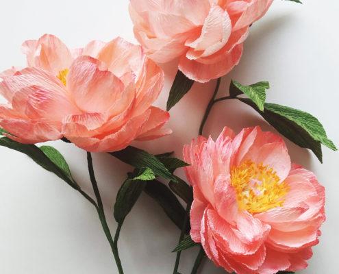Fleurs en papier : pivoine Coral Charm
