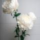 Fleurs en papier géantes pour la décoration de votre intérieur, votre boutique, votre point d'accueil, vos événements, vos shooting...